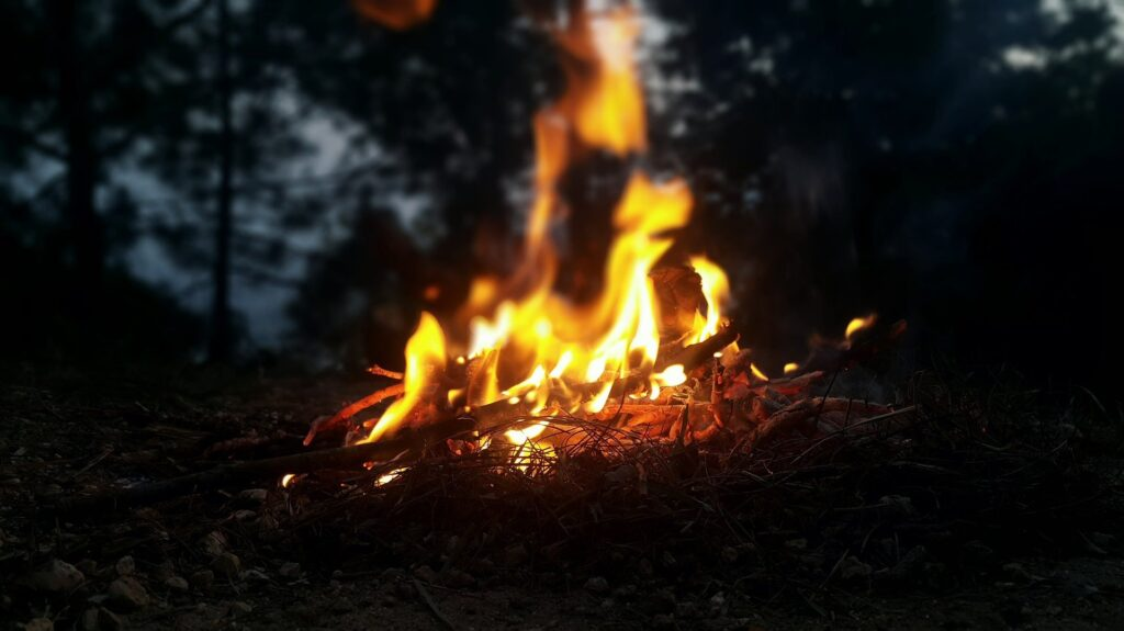 Campfire in the woods