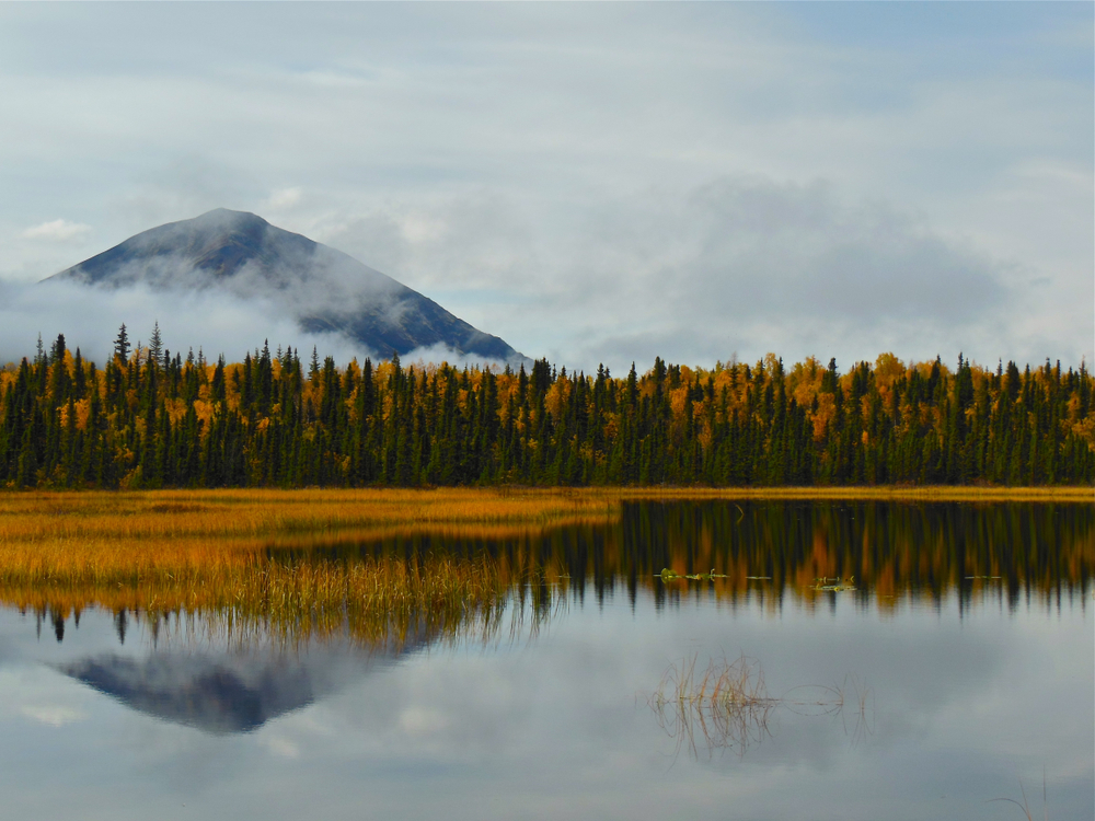 Reflections of Fall Colors in Lake Clark National Park in Alaska