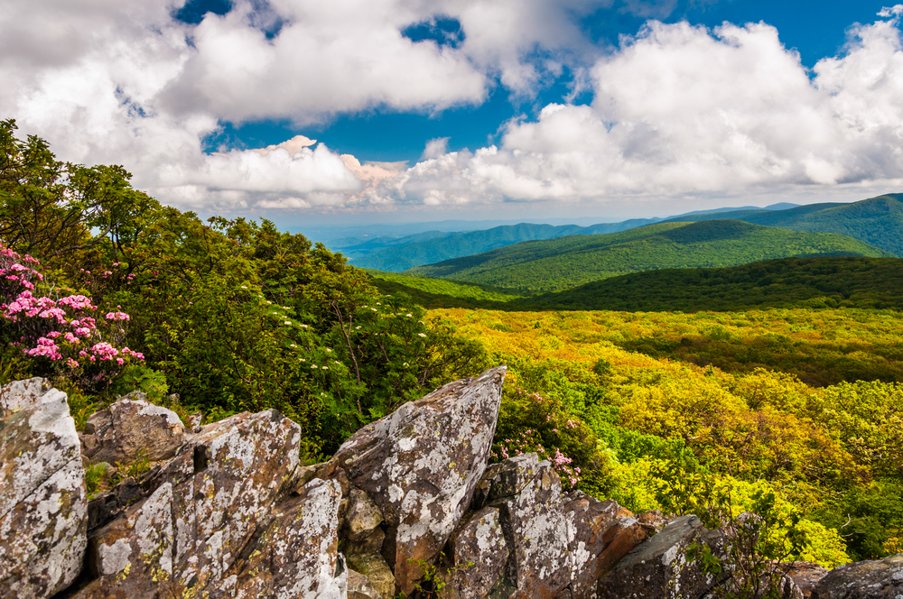 View of the Blue Ridge from cliffs on Stony Man Mountain in Shenandoah National Park, VA