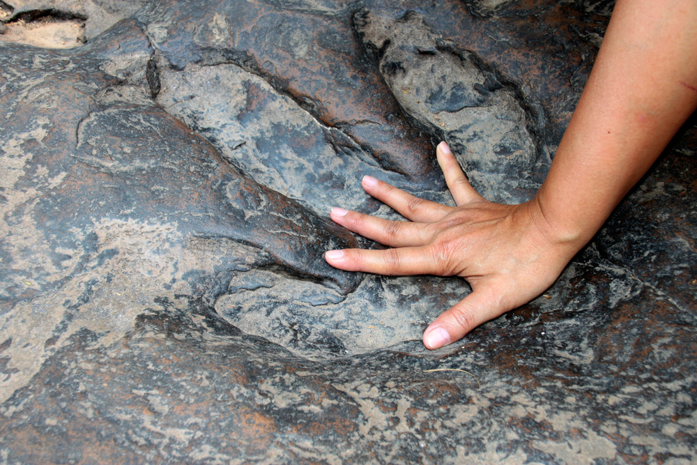 Real preserved dinosaur footprints await at Dinosuar State Park in Connecticut