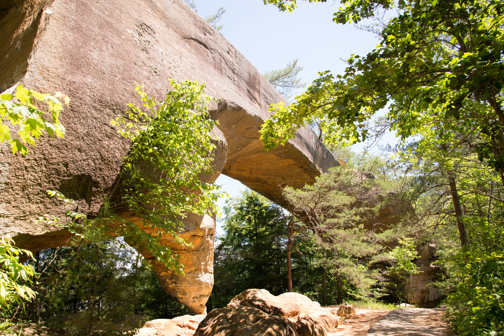 Sky Bridge is a sandstone arch in the Red River Gorge geological area.