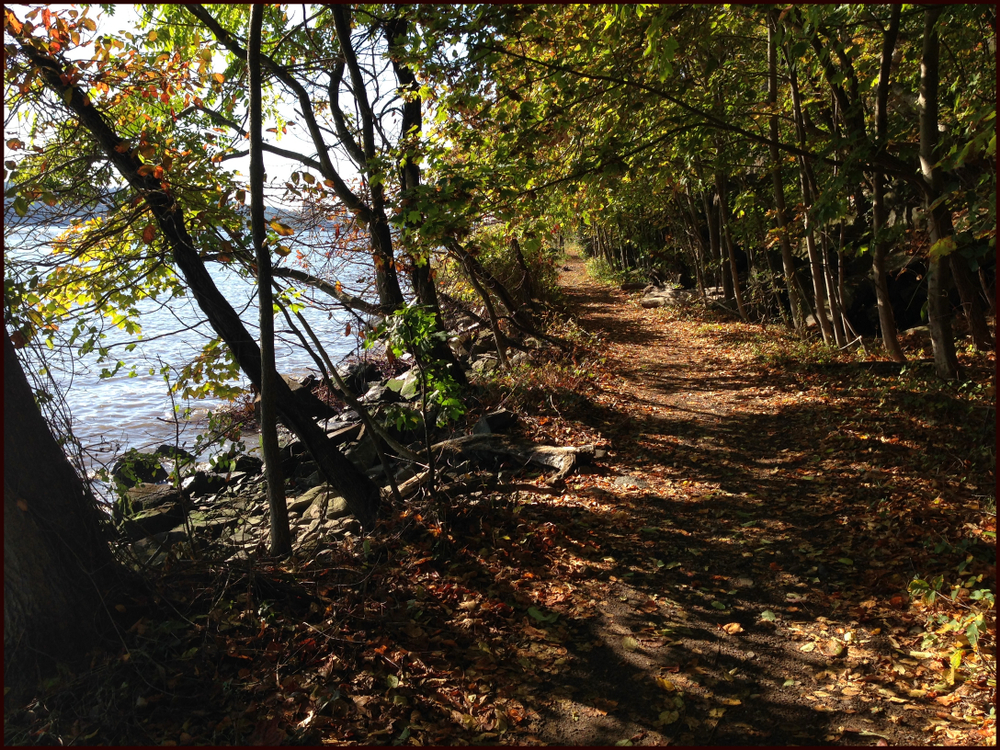 Royalty-free stock photo ID: 1122935060  Shore Trail along the Hudson River inside Palisades Interstate Park