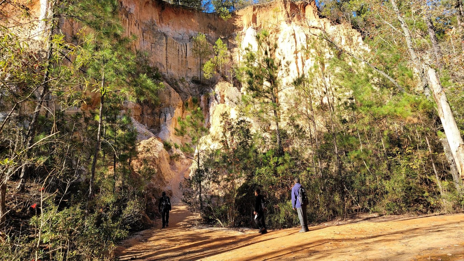 Three young boys stand on a hiking trail and look up towards a cliff.