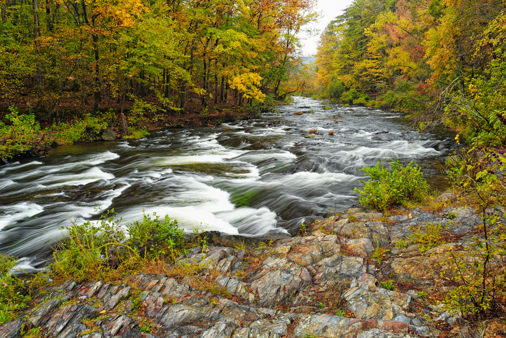 Mountain Fork River at Beaver's Bend State Park II