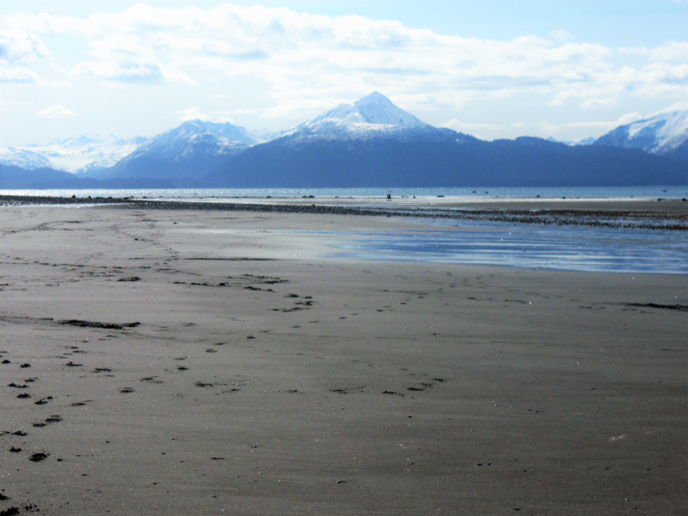 On Bishop's Beach in Homer, Alaska, looking out at Kachemak Bay and the Grewingk Glacier.