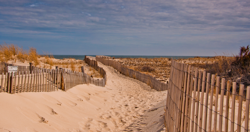 Path to the beach at Cape Henlopen State Park, Delaware  J