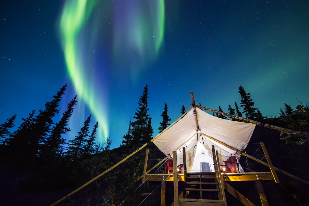 The green light of the aurora borealis glows in the night sky above a luxury tent illuminated by bright white lights. Trees surround the campsite.