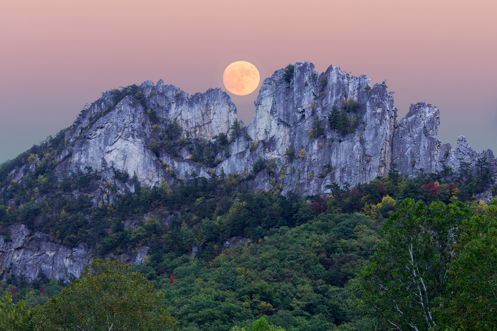 A supermoon rises over the dip in the middle of a unique rocky mountain, Seneca Rocks. The foothills are covered in green forests.
