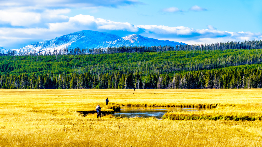 Fishermen cast lines in a river that winds through a flat plain covered in golden grass, a distant forest and mountain range stretching across the horizon under a bright blue sky.