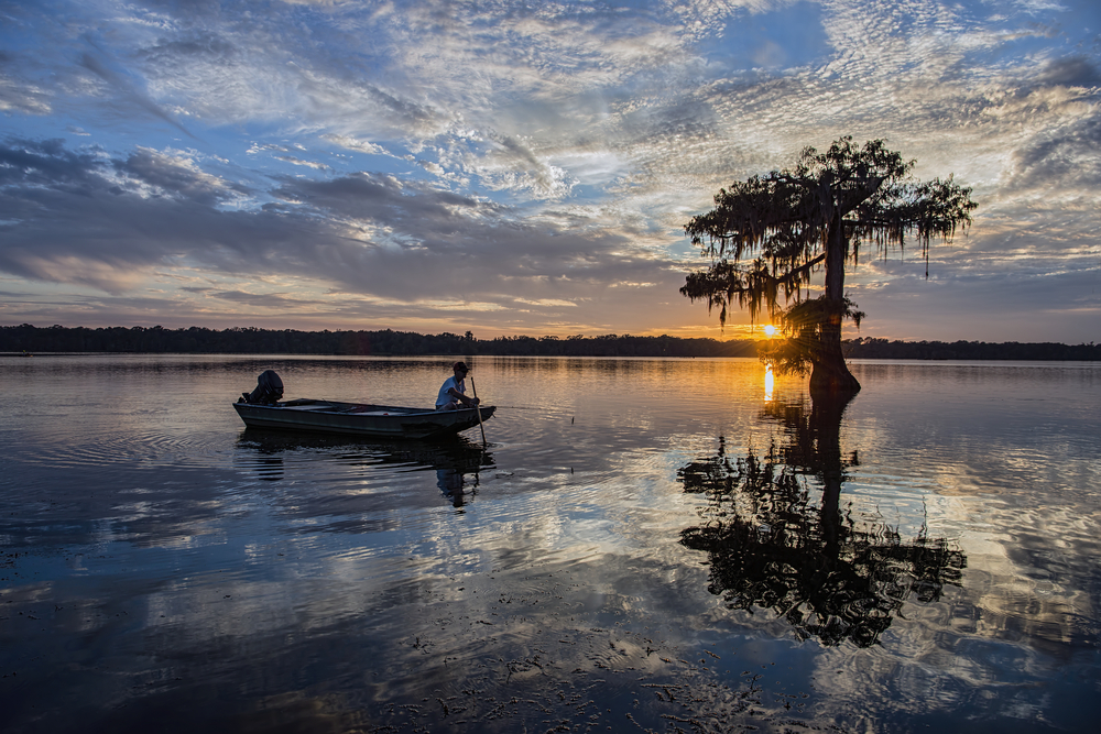 A fisherman leans a long stick over the edge of his boat near a submerged tree as the sun sets over the lake's horizon line.