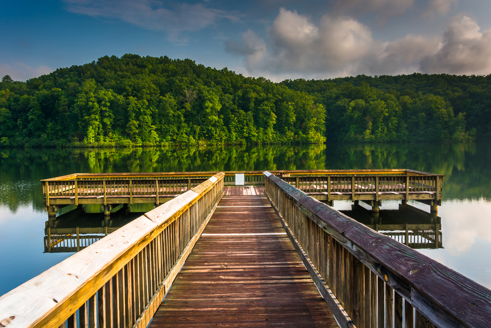 A wooden pier juts out into a lake surrounded by verdant green forests.
