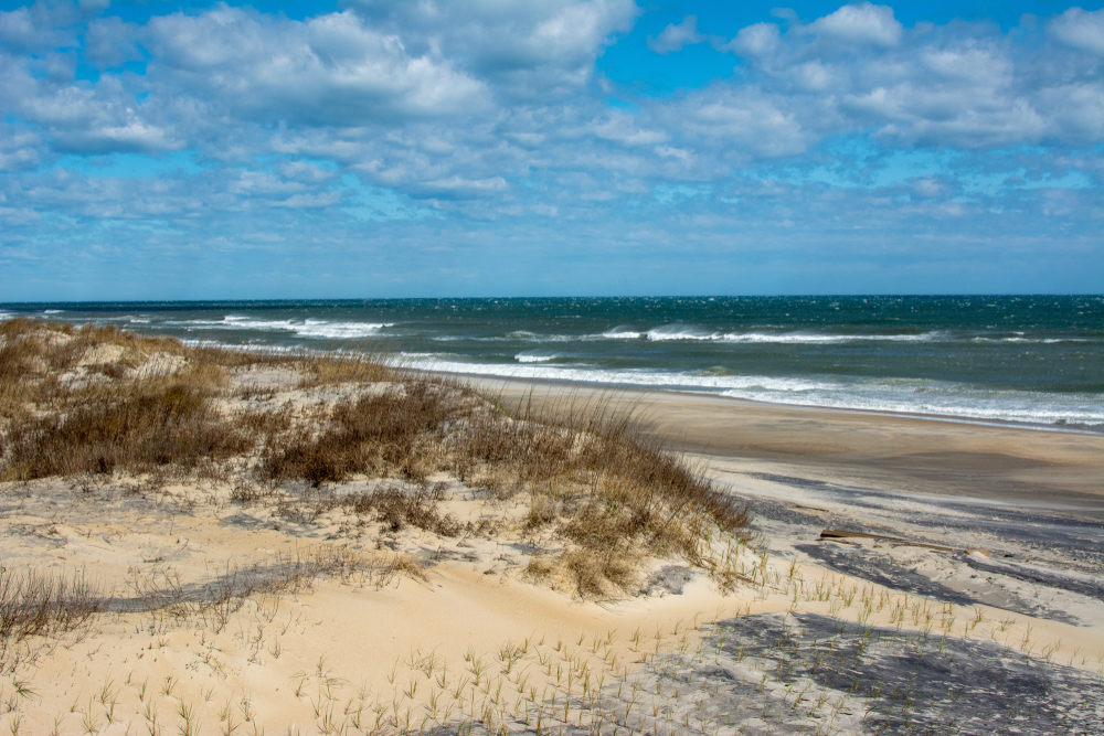 Windy day at the sand dunes on Pea Island in the Outer Banks of North Carolina. Pea Island is part of the protected Hatteras National Seashore.