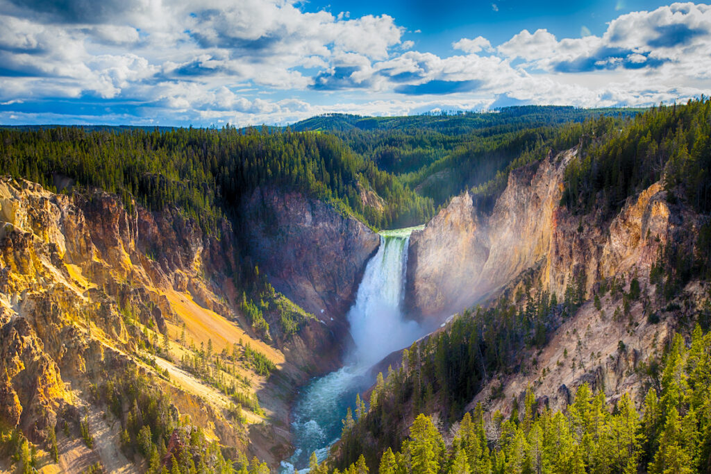 Lower Falls of the Yellowstone National Park Wyoming