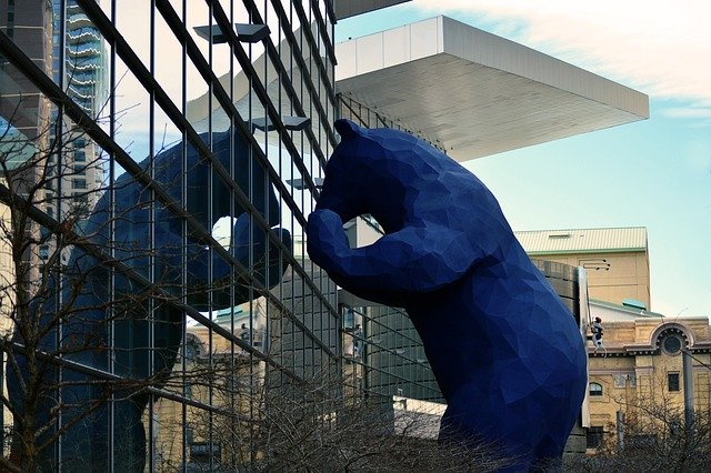 a large blue bear sculpture peers in a window in downtown Denver
