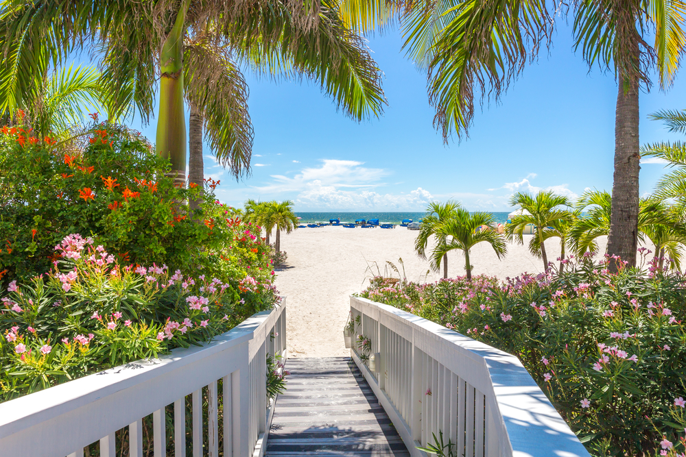 A boardwalk with a white railing bordered by pink and red flowers and palm trees leading to a sandy beach.