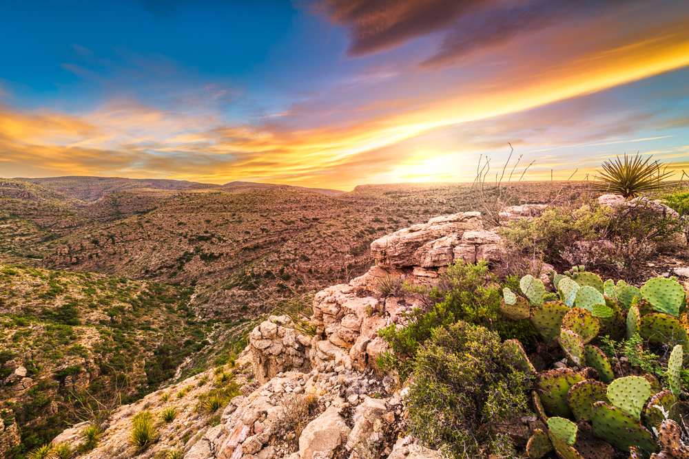 Cacti and green desert plants grow on a cliff overlooking rocky terrain dotted with greenery under a sunset.
