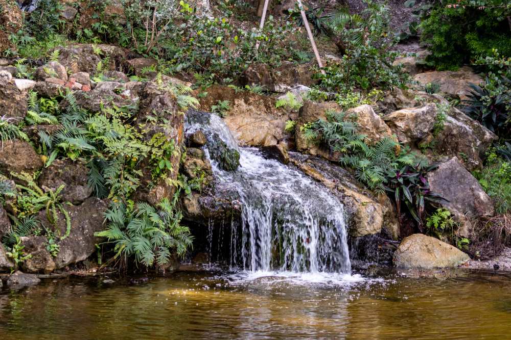 Delray Beach, FL / USA - 1/12/2020: Oshogatsu New Year's Festival at the Morikami Museum Japanese Gardens. Man made waterfall within the park feeding a living lake pond