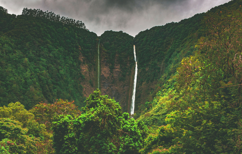 Hiilawe Falls, the biggest and tallest waterfall in the state that feeds the river winding through Waipio Valley in the Hamakua district on the north shore of the big island of Hawai'i, United States.